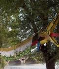 Création et réalisation d'une marionnette de 20 m en plastazote.