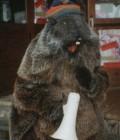 Réalisation de la mascotte de Guzet Neige, en mousse et tissu.