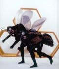 Réalisation de divers insectes en mousse plastazote.