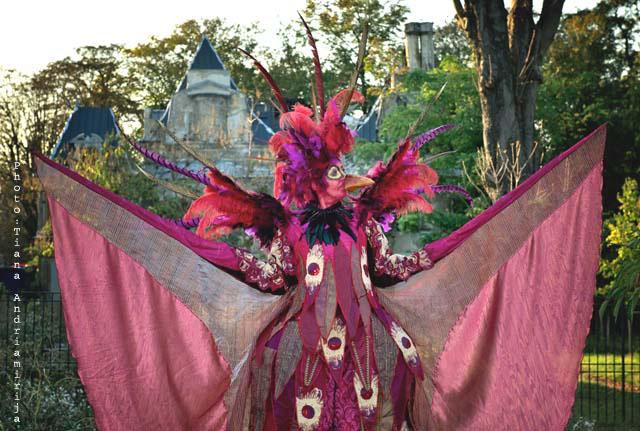 Costume d'échassier pour Ara