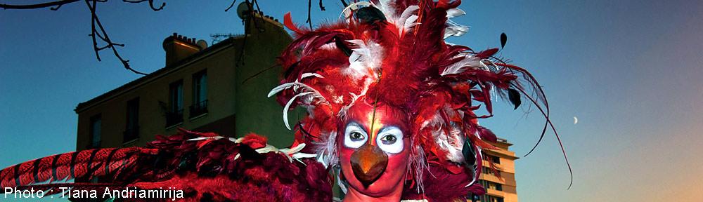 Irik costumes oiseaux